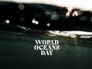 https://www.soulandsurf.com/wp-content/uploads/2021/01/World-Oceans-Day-–-Taking-Action-1-300x225.jpg