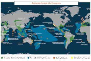 https://www.soulandsurf.com/wp-content/uploads/2021/08/Journal-World-Ocean-BiodiversityMap_Website-300x200.jpeg