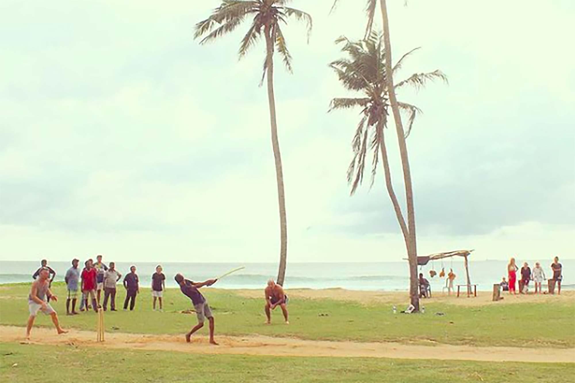 https://www.soulandsurf.com/wp-content/uploads/2021/08/Lanka-Guide-Images-Lion_s-Rest-Grass.jpg Image