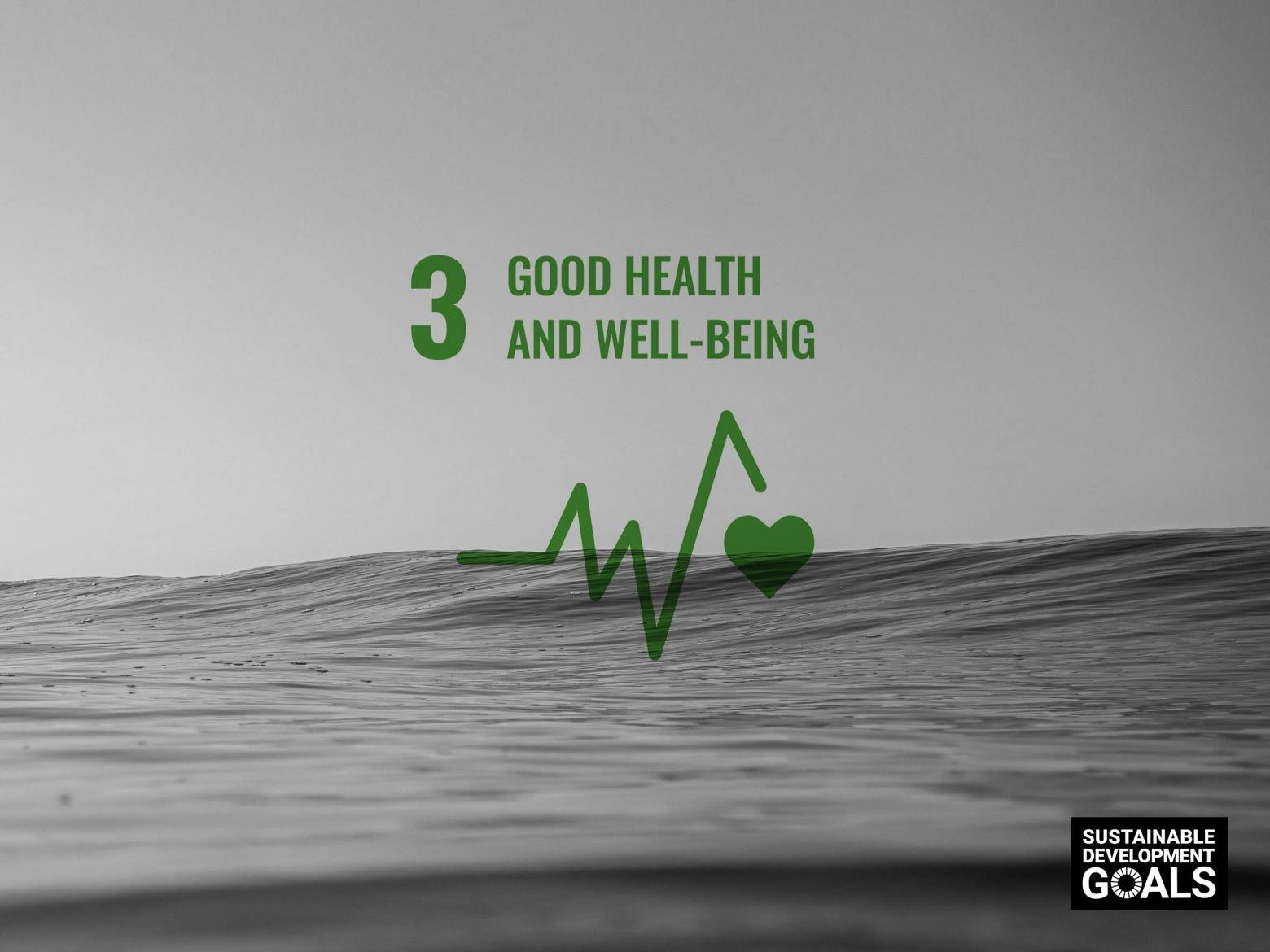 https://www.soulandsurf.com/wp-content/uploads/2021/08/our-sustainable-ish-plan-S_S-UNSDG-Good-Health-e1628601726216.jpg Image