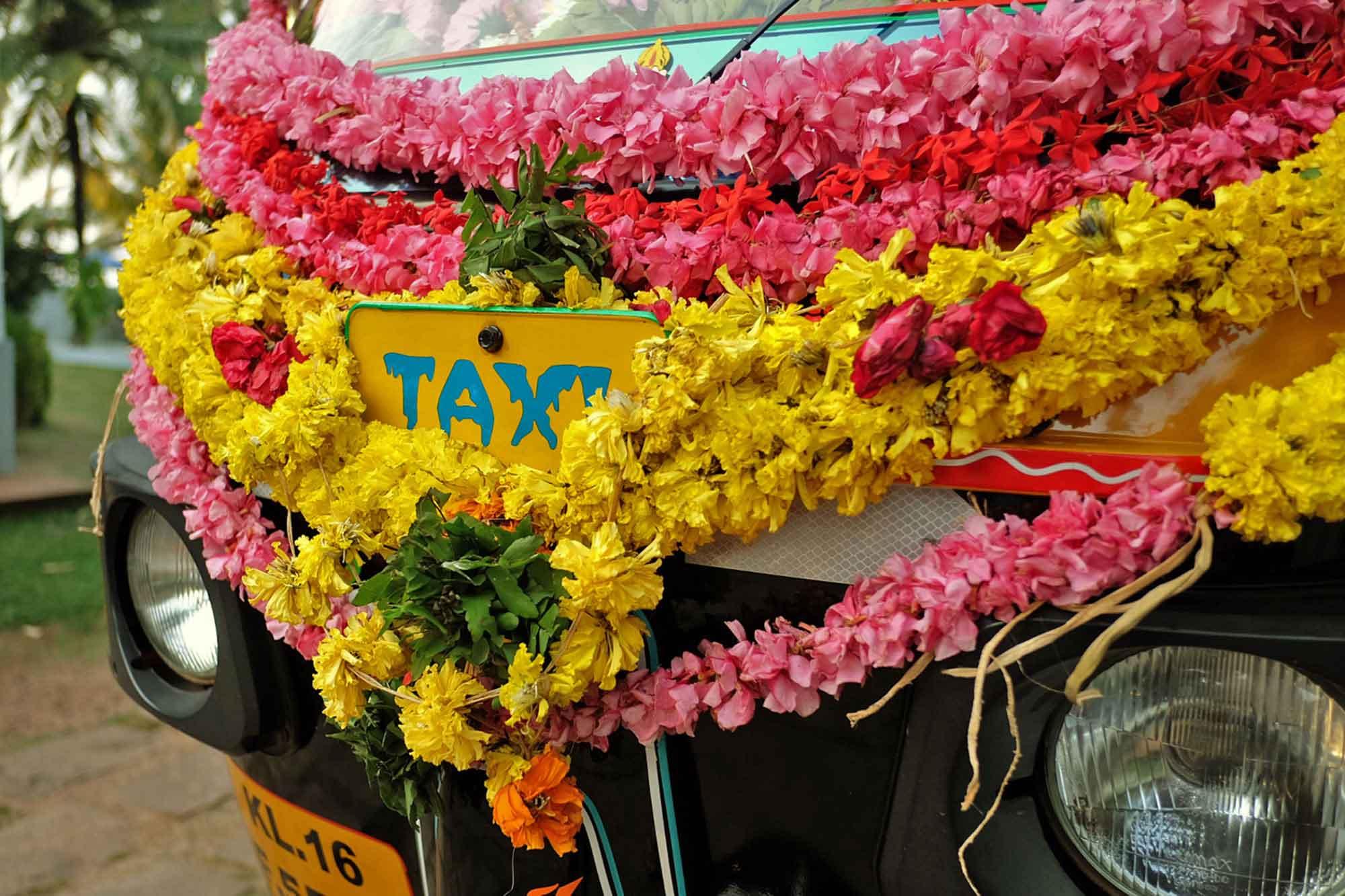 https://www.soulandsurf.com/wp-content/uploads/2021/09/Retreatsindia-images-Photo-2014-11-17-9-29-18-PM-1.jpg